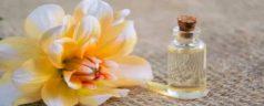 Olio di canfora: benefici e controindicazioni