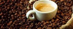 Come conservare il caffè: tutti i consigli da seguire