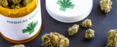 La cannabis come fulcro centrale nella medicina